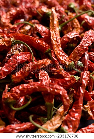 The dried peppers closeup - stock photo