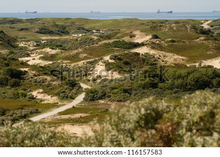 The dunes and North-Sea in the Netherlands