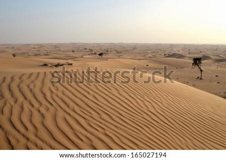 The dunes in the desert, Dubai, United Arab Emirates - stock photo