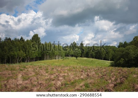 The edge of the forest, field, summer, plowed lands - stock photo