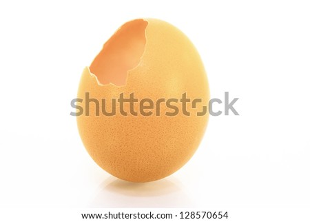 The egg, the shell isolated on a white background.