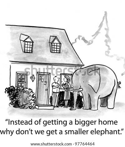 the elephant requires a bigger house to fit
