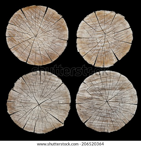 The ends of the logs in the section. - stock photo
