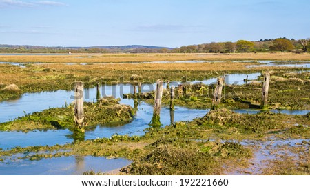 The Estuary at Newtown Harbour National Nature Reserve Isle Of Wight England