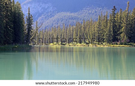 The evergreen lined turquoise Bow River.  Shot in Banff National Park, Alberta, Canada.  - stock photo