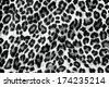 The fabric of motifs leopard on background  - stock