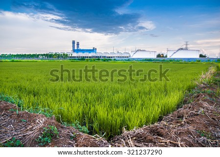 The factory and field in thailand