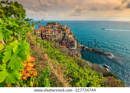 The famous wineyard and beautiful riviera of Cinque Terre,Manarola town,Italy,Europe - stock photo