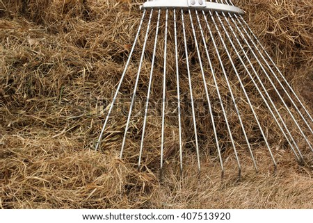 The fan rake for lawns and lots of dry grass - stock photo