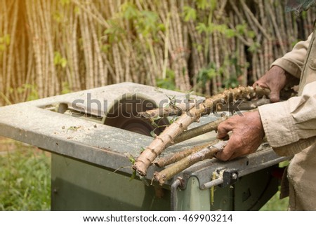 The Farmer is prepared Cassava for planting.