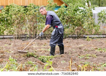 The farmer rails the garden with rakes in the country