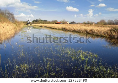 The fens in East Anglia are a marshy region, artifically drained and transformed into arable farming areas, with production of grains, vegetables and some cash crops such as rapeseed or canola. - stock photo