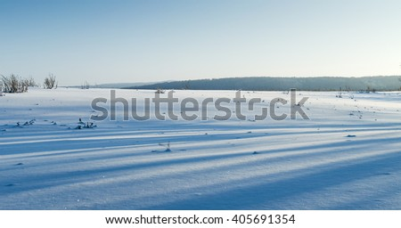 The field covered with snow with a shadow from a tree in sunny winter day, winter nature series