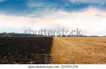 The field where one part with dried grass and second with ground and blue dramatic sky with clouds