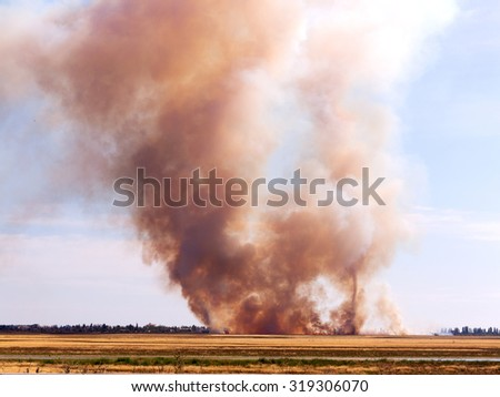 The fire and heavy smoke in the desert near the settlement during drought - stock photo