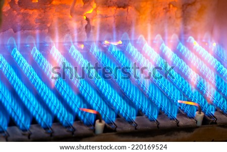 The fire burns from a gas burner. Blue flame when burning gas. - stock photo
