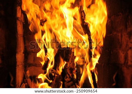 The Fire flames - stock photo