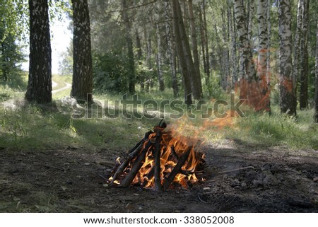 The fire in the forest in summer - stock photo