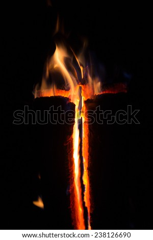 The fire of a wooden Log - stock photo