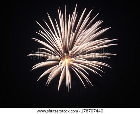 The fireworks display in black sky background to celebration - stock photo
