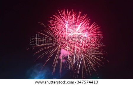The fireworks display in black sky background to celebration