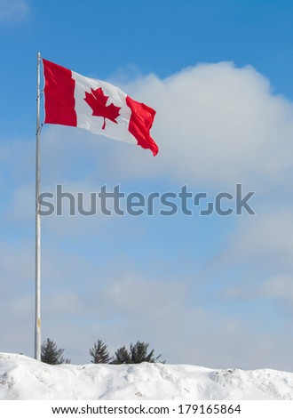 The Flag of Canada sticking out of a massive bank of snow against a lightly clouded blue sky .  Room for copy space.   - stock photo