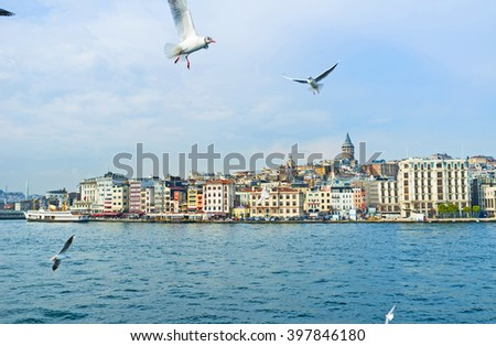 The flying gulls over the Golden Horn Bay with the central city district on the background, Istanbul, Turkey. - stock photo