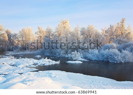 The foggy river with the frozen trees