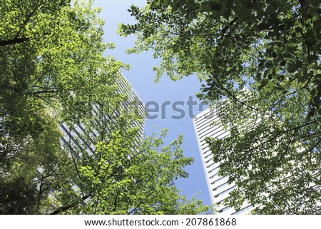 The Fresh Green Near Osaka Business Park - stock photo