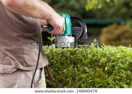 The Gardener is cutting the hedges during a sunny day. - stock photo