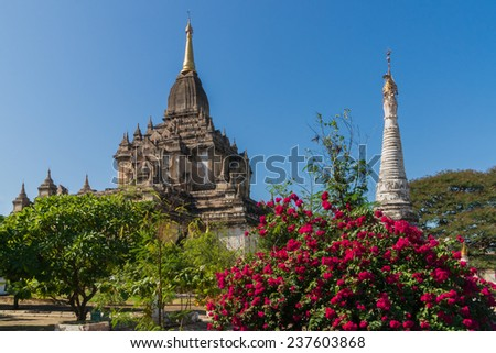 The Gawdawpalin Temple in Old Bagan, Myanmar, is the 2nd tallest temple in this region - stock photo