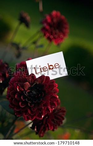 "The german word ""Liebe"" - love - stock photo"
