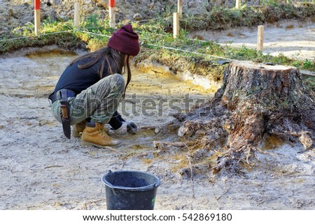 The girl-archaeologist removes the roots of a tree in the excavation