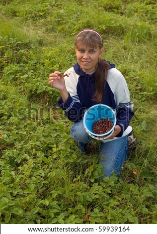 The girl collects a berry - stock photo