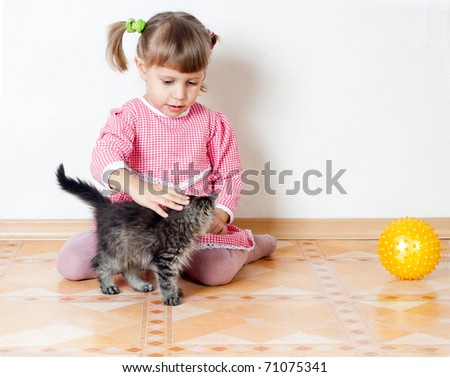 The girl irons a kitten, an interior - stock photo