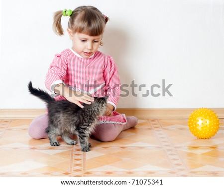The girl irons a kitten, an interior - stock photo
