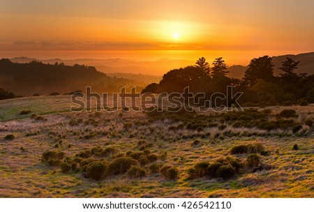The golden California sun sets over a chaparral meadow, the Santa Cruz Mountains, and the Pacific Ocean in the distance
