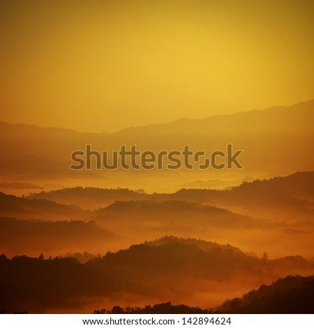 the golden layer - stock photo