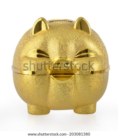 The Golden Pig piggy bank on white background - stock photo