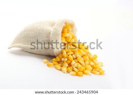 The grain corn in small sack - stock photo