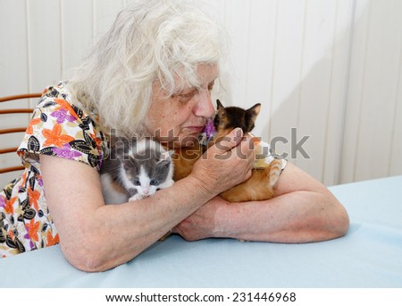 The grandmother holding three  kittens - stock photo