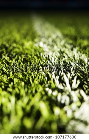 The grass on a football ground, close-up. - stock photo