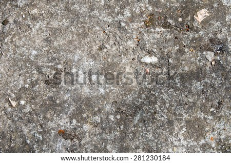 The gray concrete wall with traces of moss and small stones. textural composition - stock photo