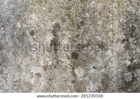 The gray concrete wall with traces of moss. textural composition - stock photo