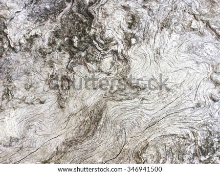 The gray texture of the wooden wall. The old wood. - stock photo