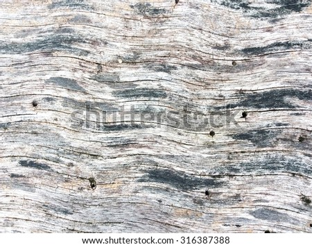 The gray texture of the wooden wall. The old wood. Photo. - stock photo