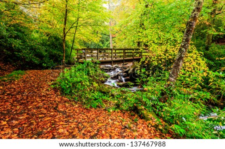 The great smokey mountains national park, bridge with waterfall , hiking trail falls colors - stock photo