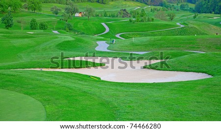 the green grass of the golf course
