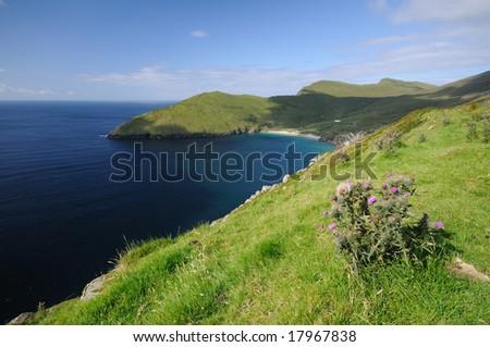 The green Island - stock photo