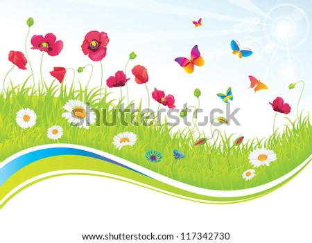 The green meadow with poppies and butterflies.